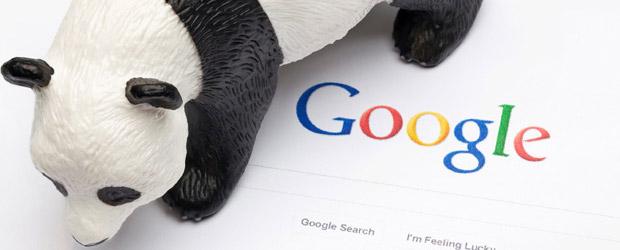 パンダアップデートに関する記事のイメージ画像